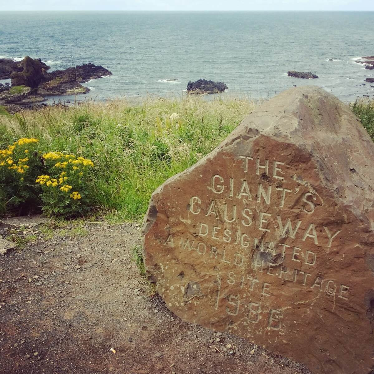 carrick-a-rede rope bridge Giants Causeway Tour facts accommodation where is tara 5 giant's causeway daytrip